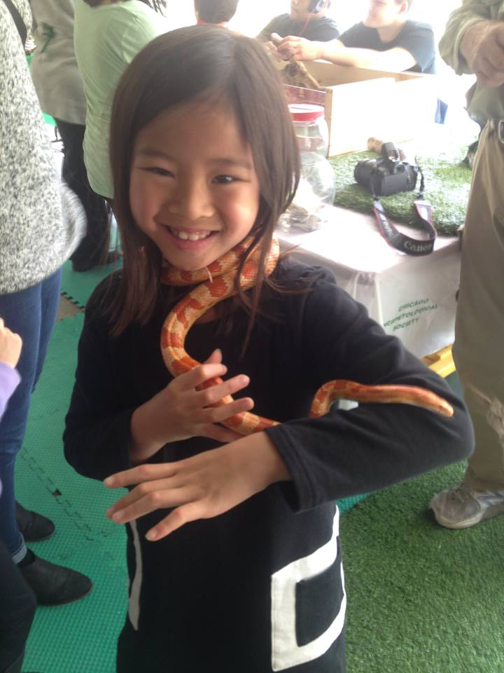 Gioia's new snake jewelry. She wore snakes around her neck and even down her shirt all day! Yuck!!